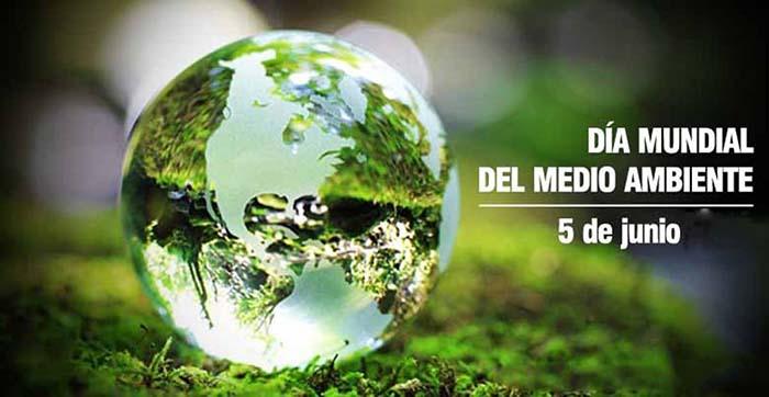 Día Mundial del Medio Ambiente: radiografía de los Hábitos de ...