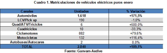 Ventas de vehículos eléctricos en enero de 2020.